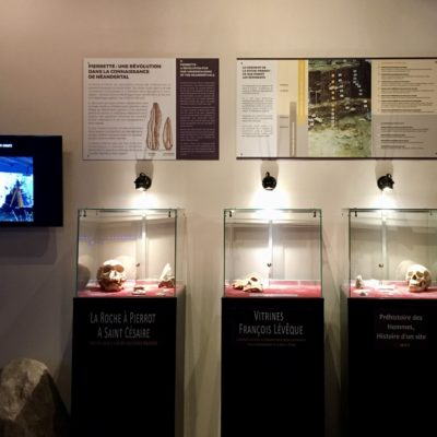 Aperçu de l'exposition permanente du Paléosite